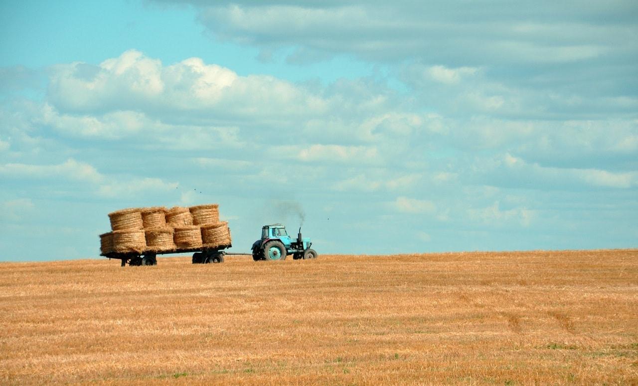 Nouvelle Aquitaine : Le Bon coin de l'agriculture