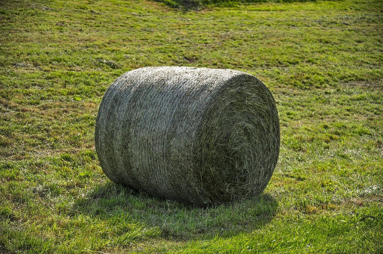 location enrubanneuse pour coupe d'herbe